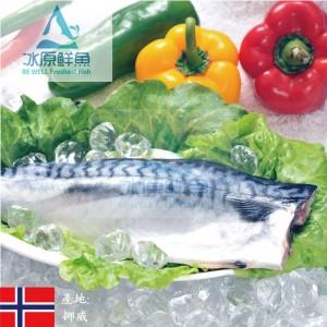 冰原鮮魚急凍挪威薄鹽鯖魚片